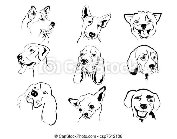 Perros Caras Diferente Gráfico Amistoso Conjunto Caras Perros