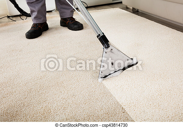 Person Cleaning Carpet With Vacuum Cleaner - csp43814730