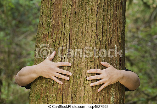 Person hugs a tree - csp4527998