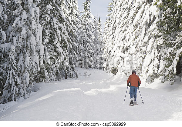 Person snowshoeing in winter landscape - csp5092929