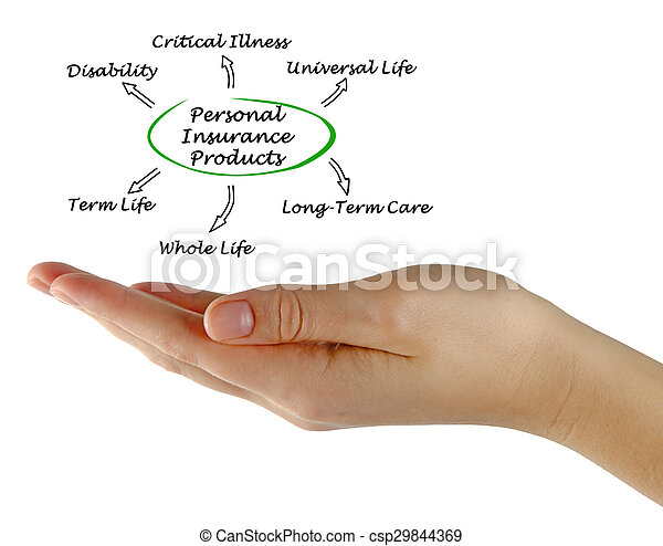 Personal Insurance - csp29844369