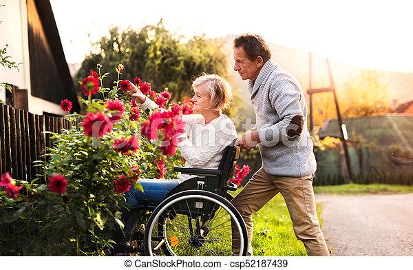 personne agee, fauteuil roulant, couple, walk. - csp52187439