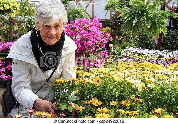 personne agee, fleurs - csp24920616