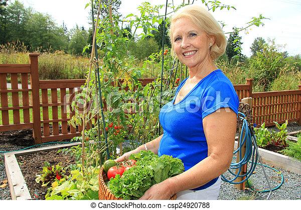 personne agee, jardinier, vegetables. - csp24920788