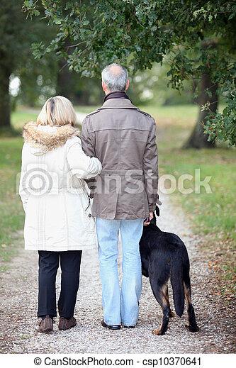 personne agee, promenade, avoir, chien, gens - csp10370641