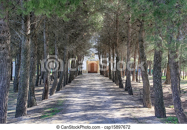 perspective dirt road under the trees - csp15897672
