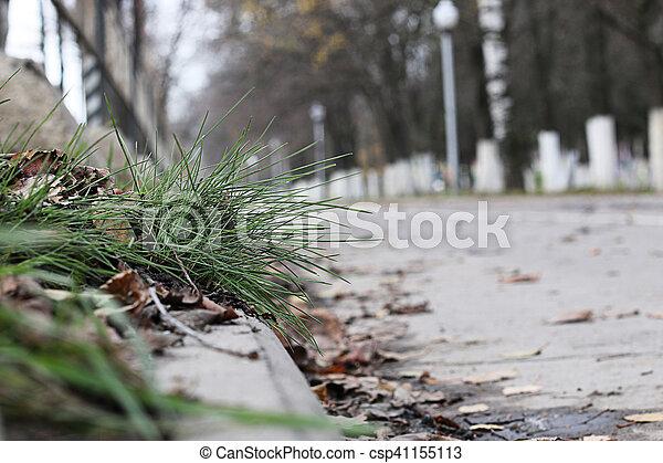 Perspective sidewalk in the park - csp41155113