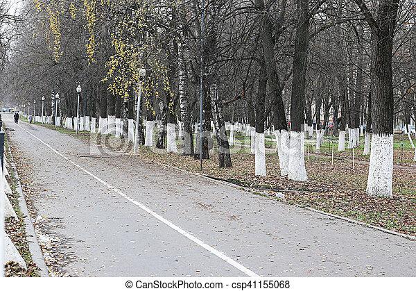 Perspective sidewalk in the park - csp41155068