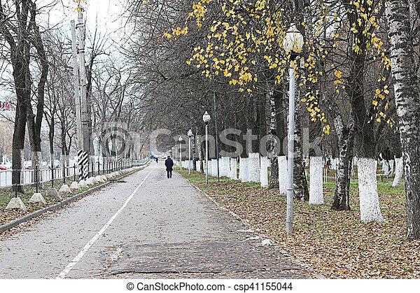 Perspective sidewalk in the park - csp41155044