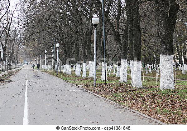 Perspective sidewalk in the park - csp41381848
