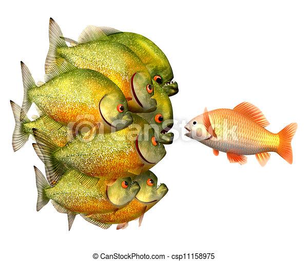 Persuasion concept, goldfish and piranhas - csp11158975