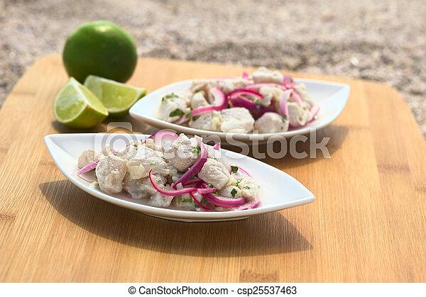 Peruvian Ceviche - csp25537463
