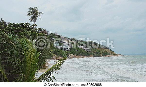 Playa tropical con palmeras agitadas en una tormenta frente a un mar desvarío. - csp50592988