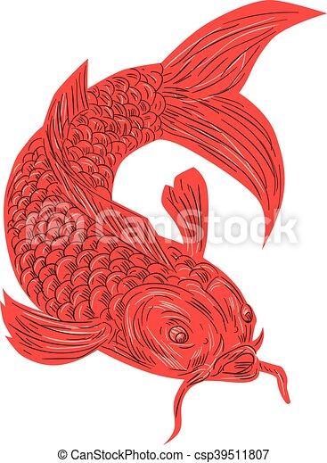 Pesce koi nishikigoi carpa disegno rosso koi schizzo for Carpa pesce rosso