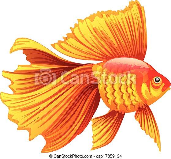Realistico Vettore Pesce Rosso Illustrazione