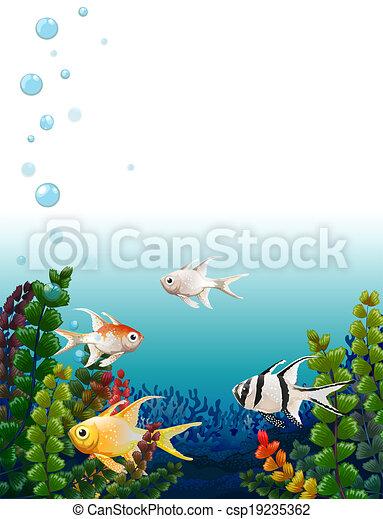 pesci, scuola, mare, sotto - csp19235362