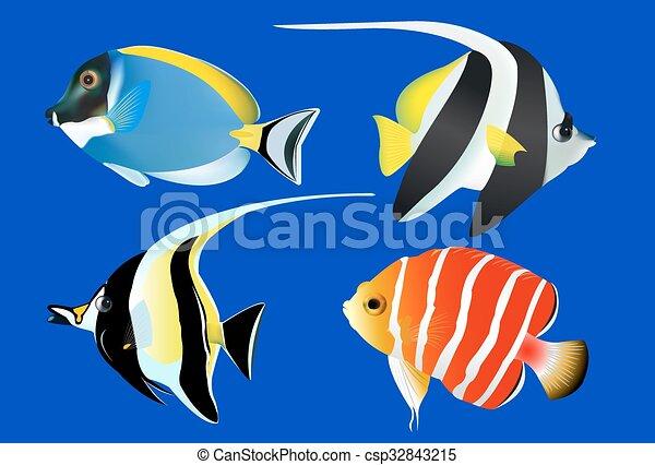 Pesci tropicali set vettore illustrazione for Vendita on line pesci tropicali