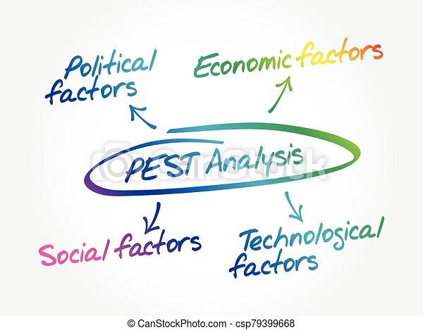 PEST analysis mind map - csp79399668