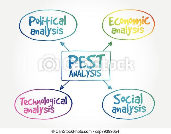 PEST analysis mind map - csp79399654