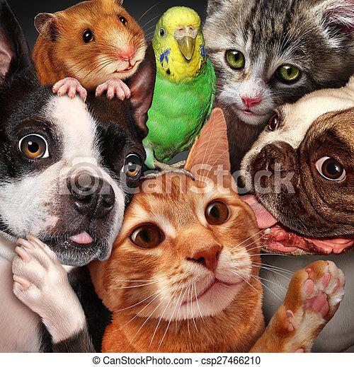 Pet Group - csp27466210