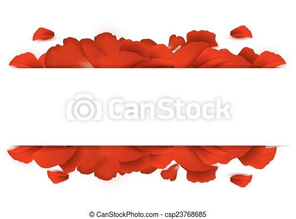 petali, bordo, rosa - csp23768685
