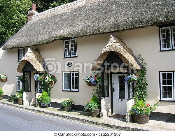 petite maison, couvert chaume - csp2201307