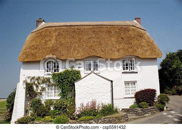 petite maison, couvert chaume - csp5591432