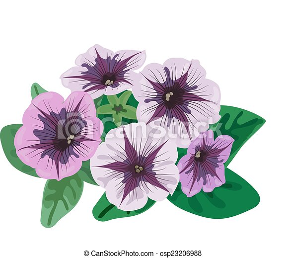 Petunia Flowers Bush Flowers And Leaves Petunia Bush On A