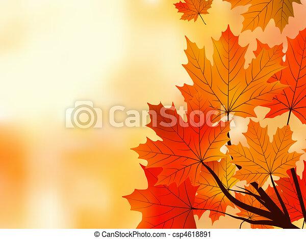 peu profond, arbre, feuilles, foyer., érable, automne, rouges - csp4618891