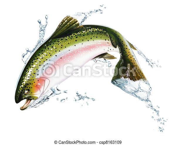 pez, algunos, splashes., saltar, agua, afuera - csp8163109