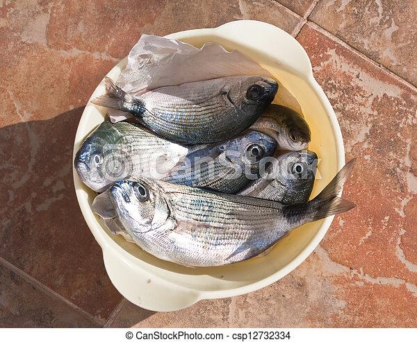 pez, marina - csp12732334