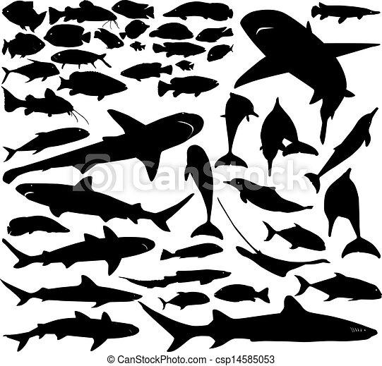 pez, vector, conjunto - csp14585053