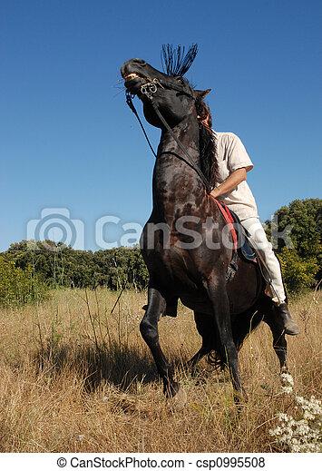 pferd, ängstlich - csp0995508