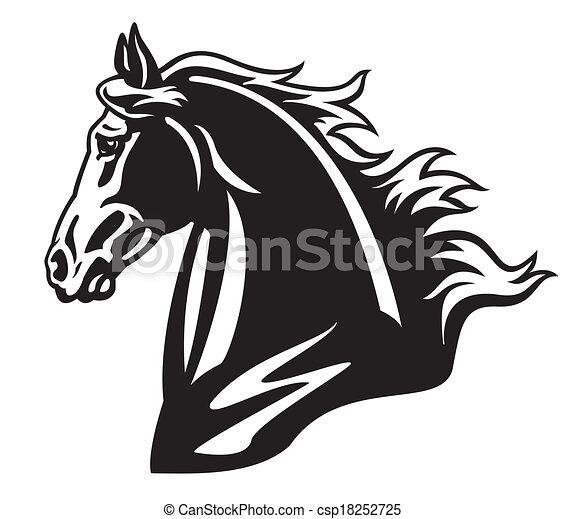 Pferd Schwarz Weißes Kopf Pferd Bild Freigestellt Schwarz