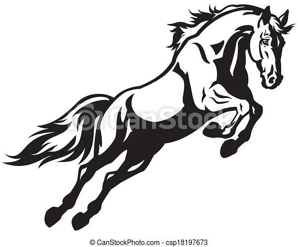 Pferd Springen Schwarz Weißes Abbildung