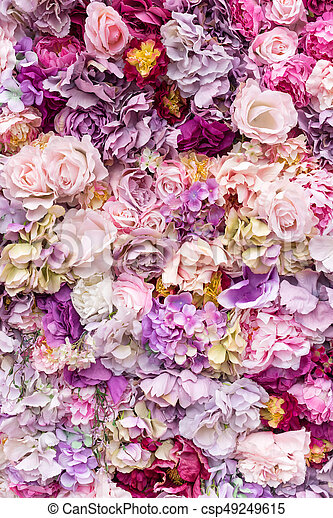 Pfingstrosen Blume Hintergrund Hydrangeas Beschaffenheit Wall