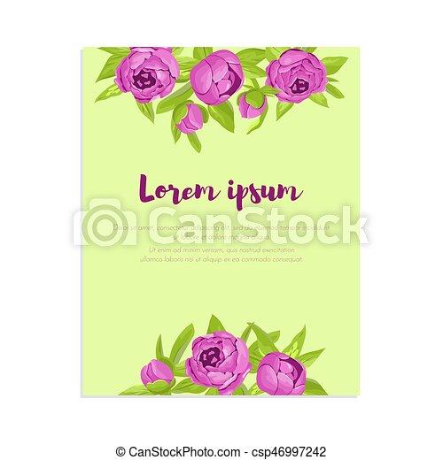Pfingstrosen, Glückwunsch, Banner, Karte, Lila, Abstrakt, Eleganz, Einladung,  Hochzeit, Wedding, Vektor