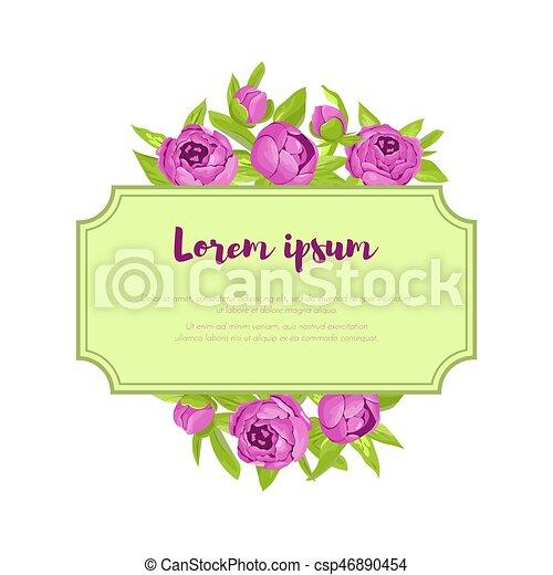 Pfingstrosen, Glückwunsch, Ungefähr, Karte, Lila, Weinlese, Rahmen,  Zeichen, Einladung, Hochzeit, Vektor