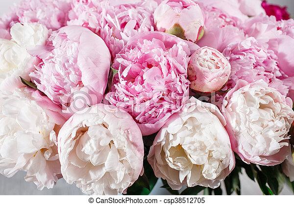 Pfingstrosen Rosa Bluten Petals Tau Hell Bluhen Frisch
