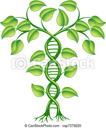 DNA Pflanzenkonzept - csp7379220