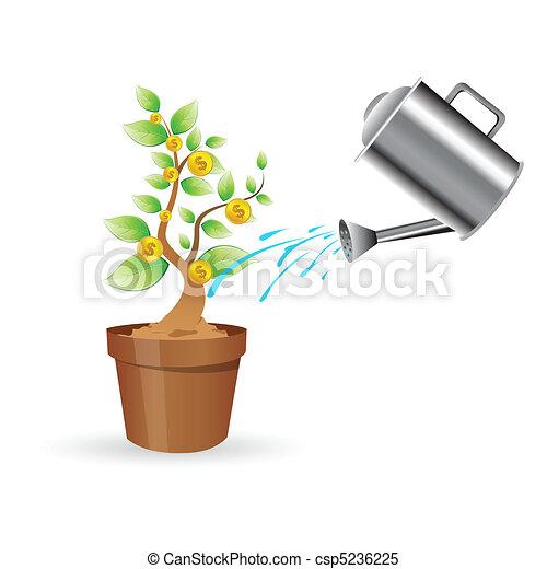 pflanze, dollar - csp5236225