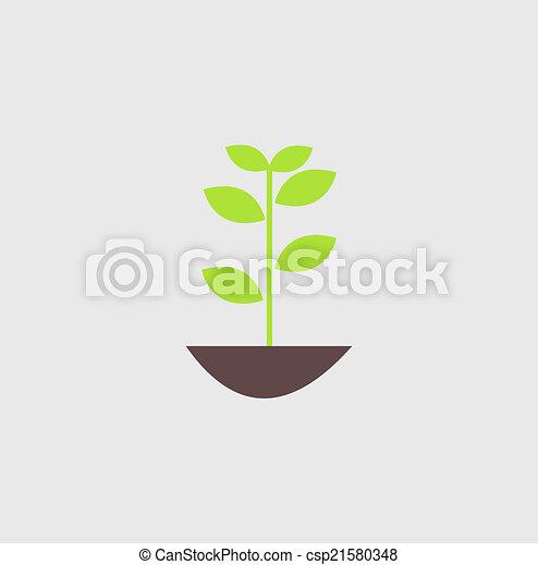 pflanze - csp21580348