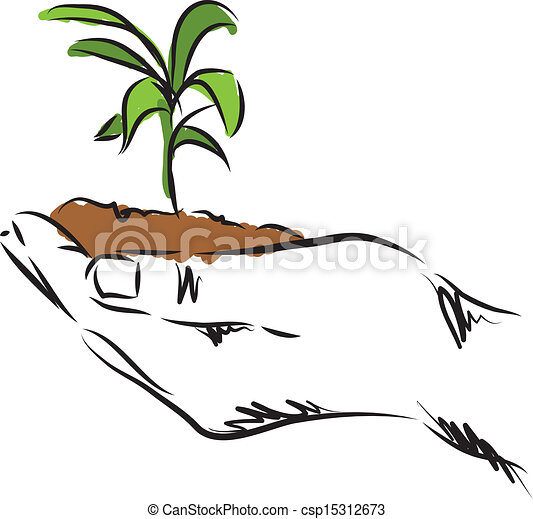 pflanze, hand, abbildung, hängender  - csp15312673
