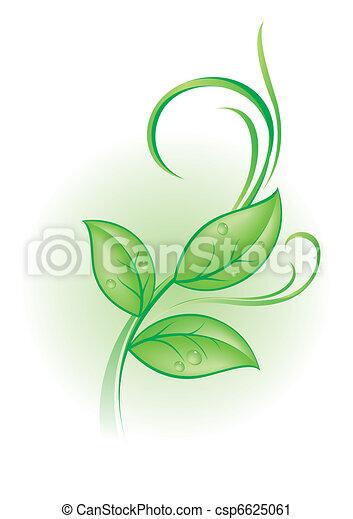 pflanze - csp6625061