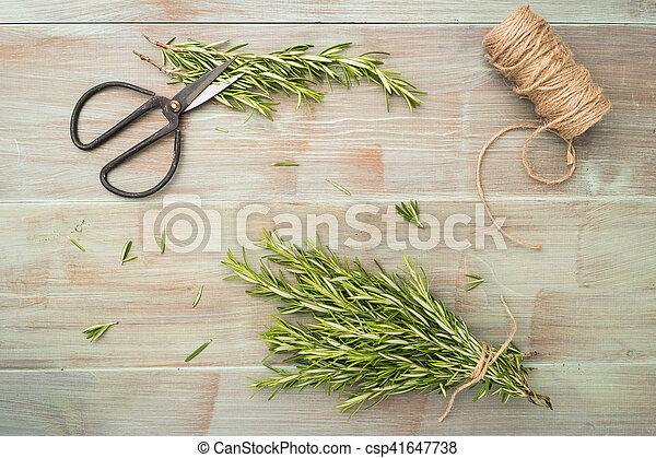 Pflanzen Kleingarten Hölzern Rosmarin Tisch Werkzeuge