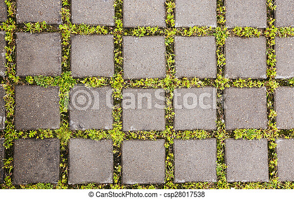 Paving Slabs - csp28017538