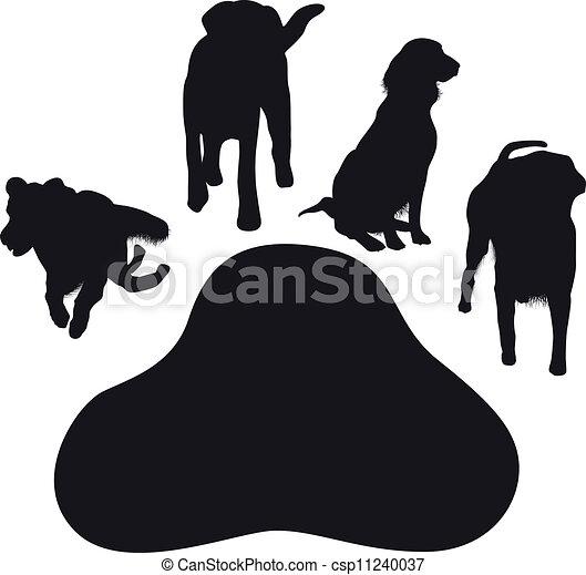 Hundepfoten - csp11240037