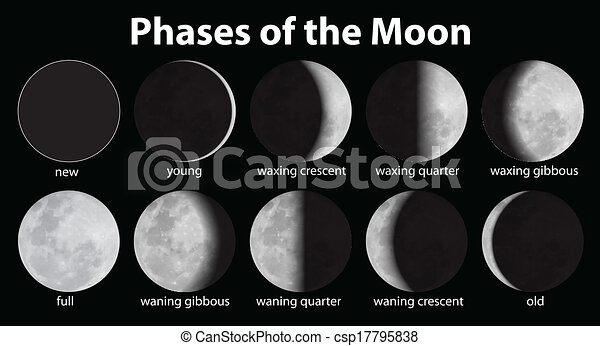 Phases of the Moon - csp17795838