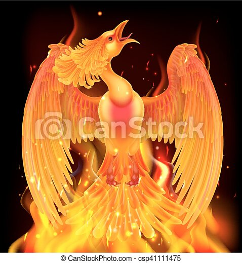 Phoenix Bird Rising From Ashes - csp41111475