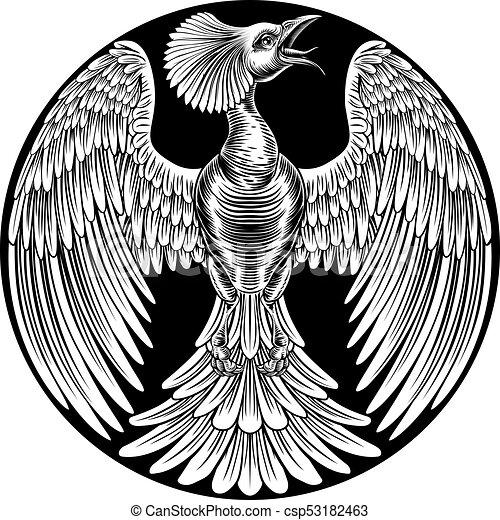Phoenix Fire Bird Design - csp53182463